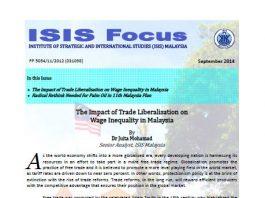 ISIS focus No.9/2014