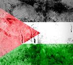 Palestine Comes of Age