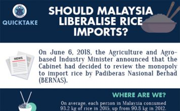 Should Malaysia liberalise its rice imports?
