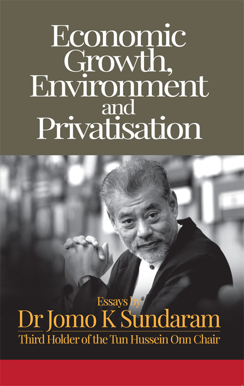 Economic Growth, Environment and Privatisation
